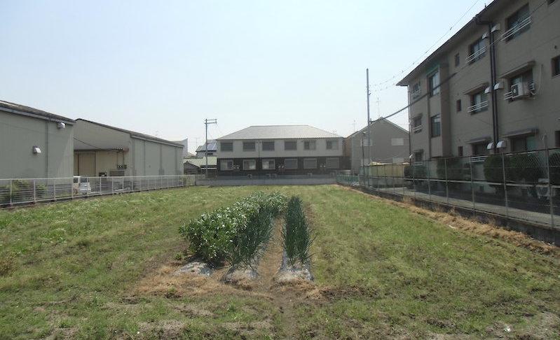 JAいずみの市民農園のご紹介を更新しました